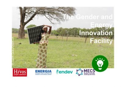 Meet Hivos and Gender and Energy Innovation Facility
